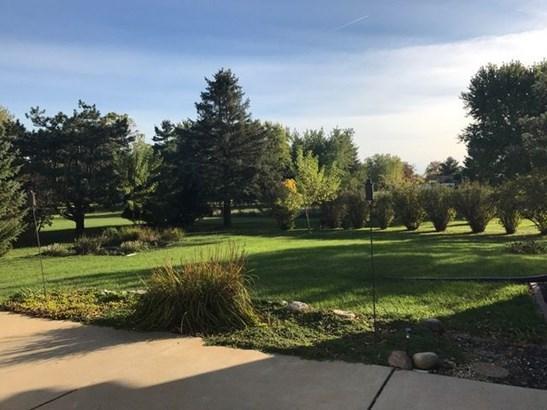 Beautiful Backyard (photo 3)
