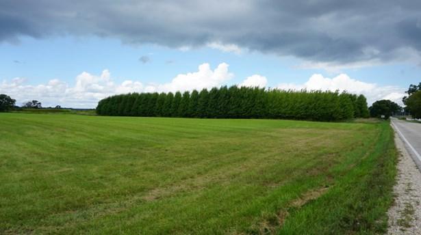 Hay field (photo 2)
