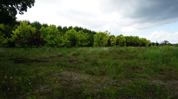 Open area (photo 3)