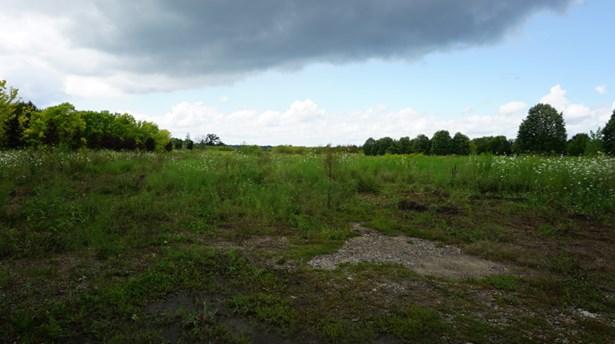 Open Area (photo 4)