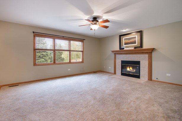 Family Rm W/Fireplace (photo 4)