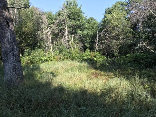 Five plus  acre of North woods (photo 1)