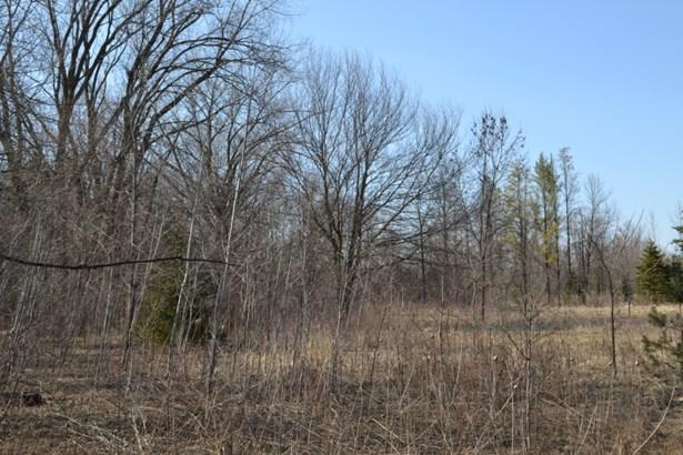 Property (photo 3)