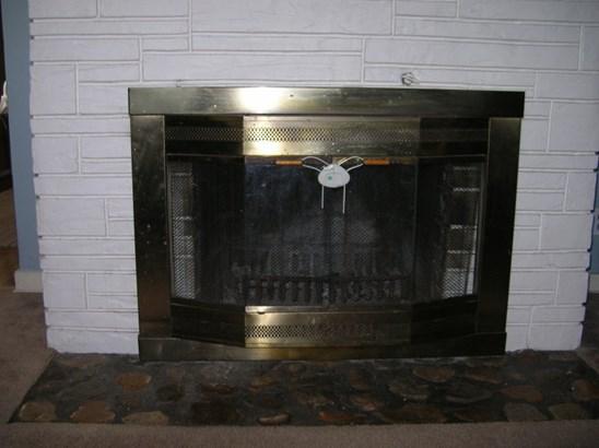 L.R fireplace (photo 3)