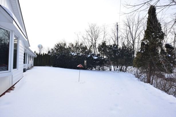 Back Yard (photo 3)
