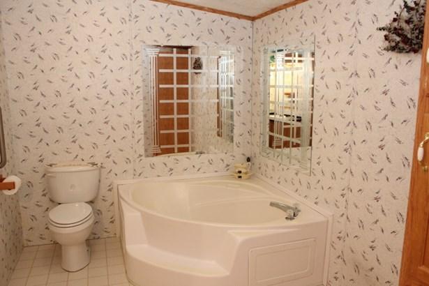 Master Bath Tub (photo 5)