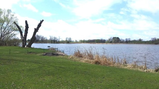 View of the Lake (photo 5)