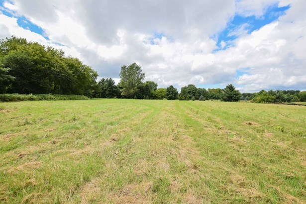 Grassy area (photo 1)