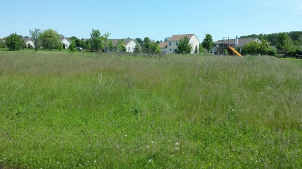 Vacant Land (photo 1)
