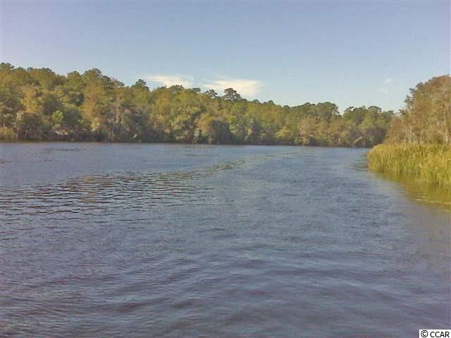 Acreage - Georgetown, SC (photo 4)