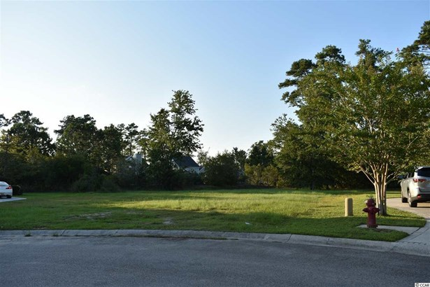Residential Lot - Myrtle Beach, SC (photo 4)