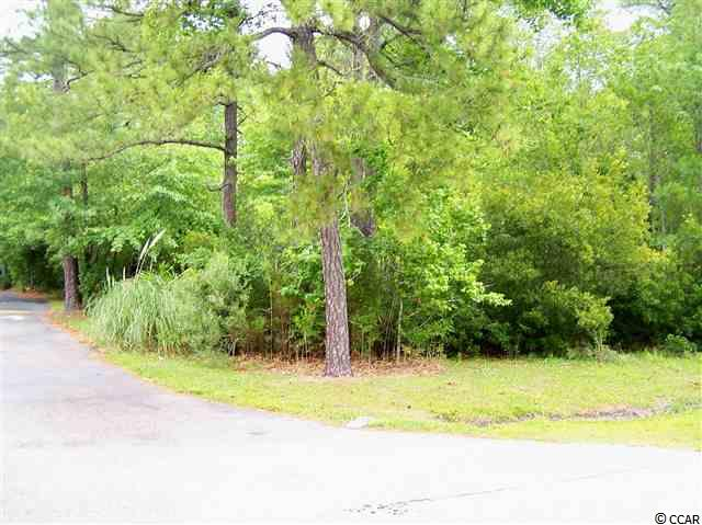 Commercial Lot - Sale - Surfside Beach, SC (photo 1)
