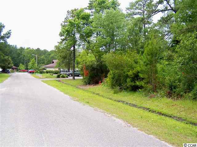 Commercial Lot - Sale - Surfside Beach, SC (photo 4)