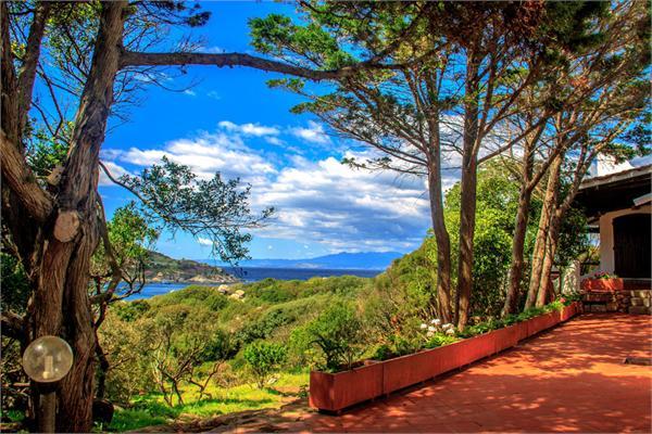 Terravecchia, Sardinia - ITA (photo 3)
