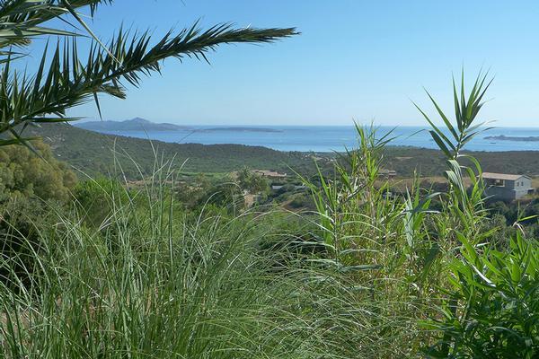 Cannigione, Sardinia - ITA (photo 5)