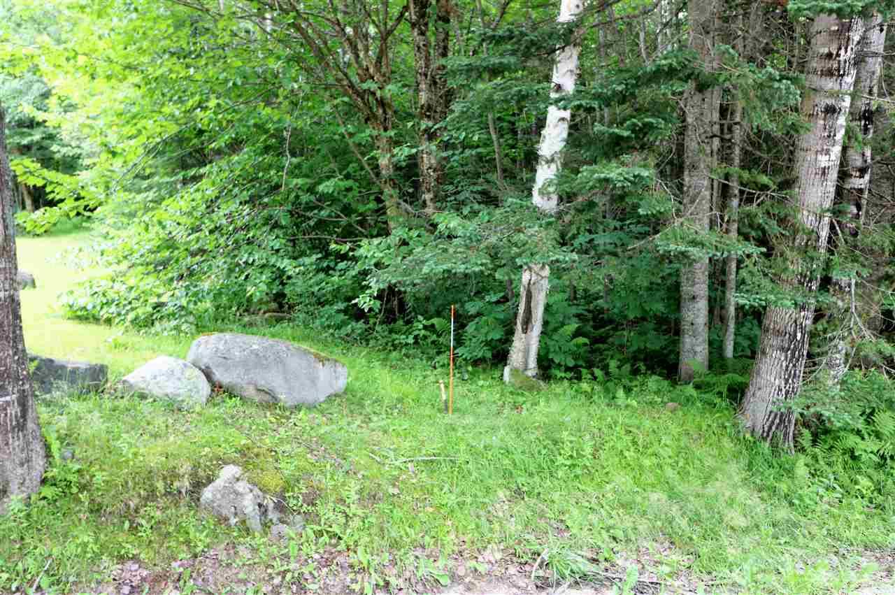 Land - Dummer, NH (photo 2)
