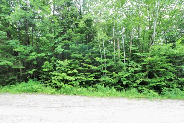 Land - Dummer, NH (photo 5)
