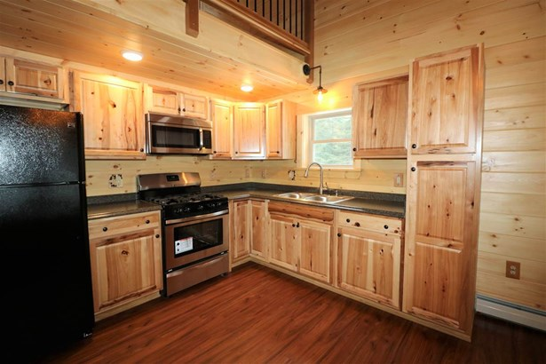 Cabin,Cape,Chalet,Cottage/Camp,Modern Architecture,Top Floor,Walkout Lower Level - Single Family (photo 3)