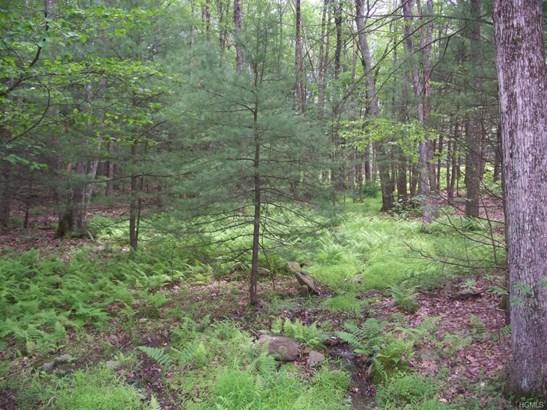 Land - Glen Spey, NY (photo 3)