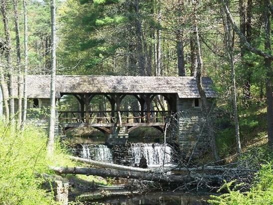 Land - Glen Spey, NY (photo 5)