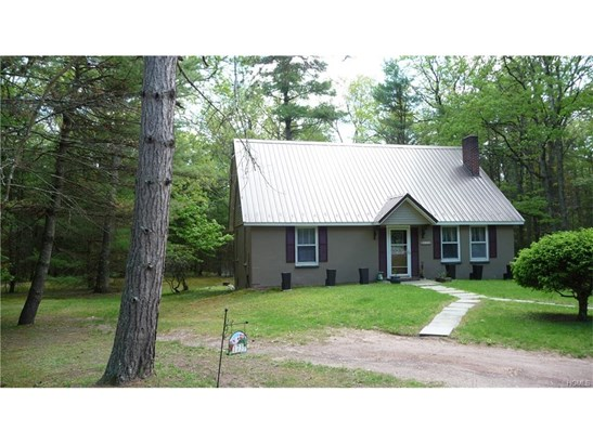 Colonial,Contemporary,Raised Ranch,Two Story, Single Family - Eldred, NY (photo 3)