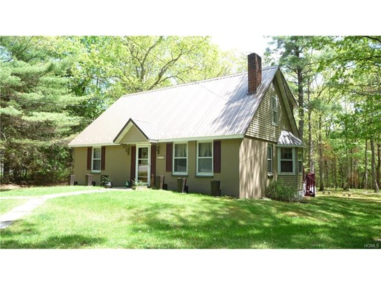 Colonial,Contemporary,Raised Ranch,Two Story, Single Family - Eldred, NY (photo 4)