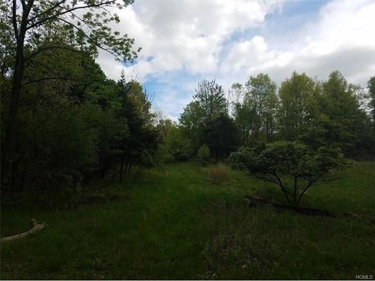 Land - Goshen, NY (photo 2)
