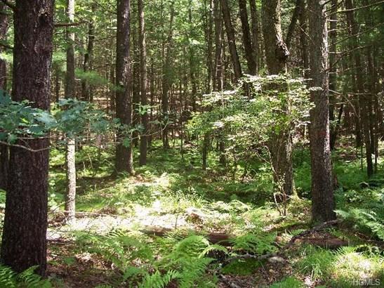 Land - Glen Spey, NY (photo 1)