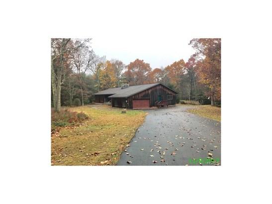 Contemporary,Ranch, Single Family - Forestburgh, NY (photo 1)