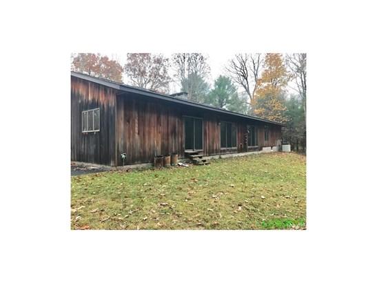 Contemporary,Ranch, Single Family - Forestburgh, NY (photo 4)