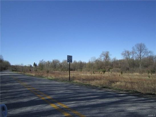Land - Montgomery, NY (photo 3)