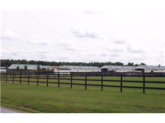 595 Black Swamp Rd, Felton, DE - USA (photo 4)