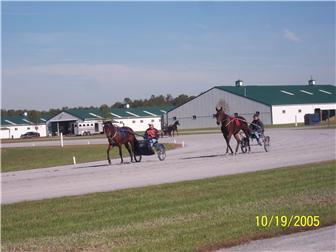 595 Black Swamp Rd, Felton, DE - USA (photo 5)