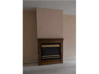 Fireplace in Living Room (photo 5)