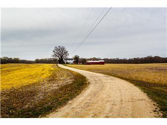 Lane to Farm House & Ag Buildings (photo 2)