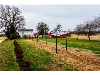 Farm House (photo 3)