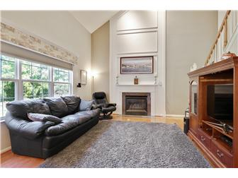 Family Room w/Vaulted Ceilings and Gas Fireplace (photo 3)