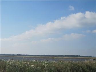 126 Shore Dr, Milford, DE - USA (photo 3)