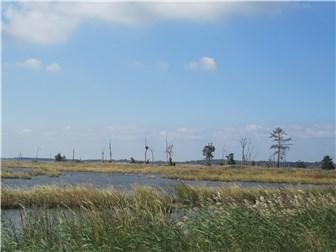 126 Shore Dr, Milford, DE - USA (photo 5)