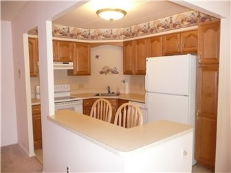 Remodeled Kitchen (photo 4)