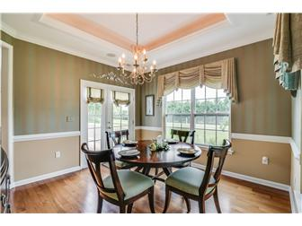 Gorgeous dining room w/tray ceiling (photo 4)