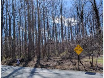 Wooded Lot, 5.4 Acres (photo 1)