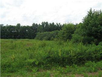 Lot 2 Fords Corner Rd, Hartly, DE - USA (photo 2)
