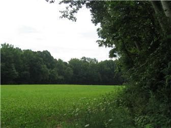 58 Acre Halltown Rd, Marydel, DE - USA (photo 2)