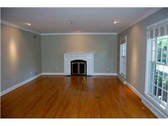 Living Room with Hardwood Floors and Fireplace (photo 3)