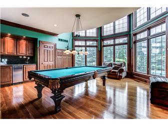 Billiard Room w/fireplace (photo 5)