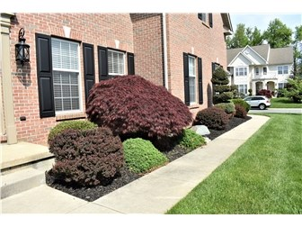 Manicured Landscaping (photo 2)