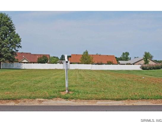 2341 Country Road, Shiloh, IL - USA (photo 1)