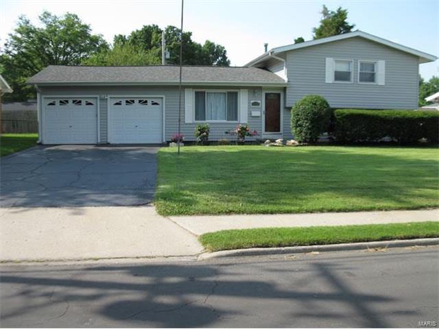 2138 Johnson, Granite City, IL - USA (photo 1)