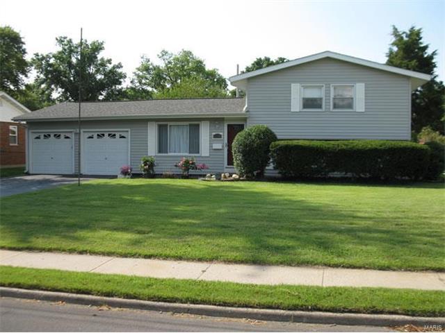 2138 Johnson, Granite City, IL - USA (photo 2)